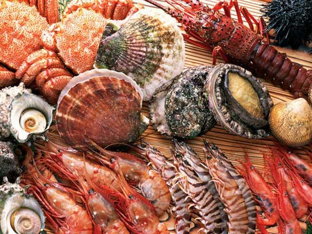 鮮度もそのままに独自のルートで北海道食材からの食材を仕入れております