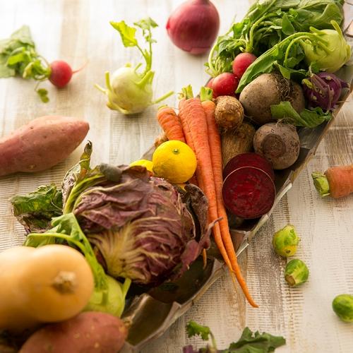 こだわりの野菜をたっぷり使って