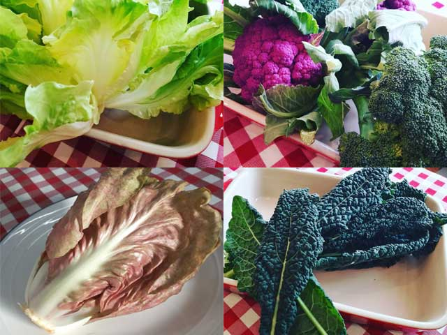 色鮮やかな野菜を使ったお料理も色々とお召し上がり頂けます。