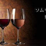 イタリアワイン輸入会社「日欧商事」で聞いてみた!「ソムリエールは知っている」Vol.17