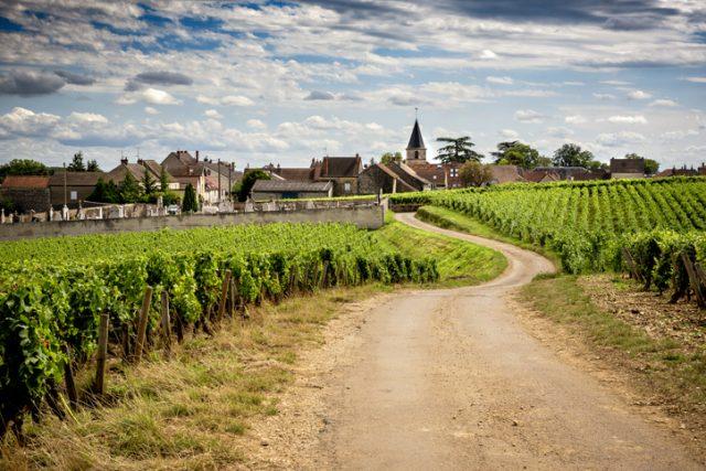 ブルゴーニュの古い家集落へ続く道とワイン畑