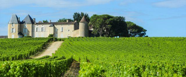 城の前に広がる広大なワイン畑