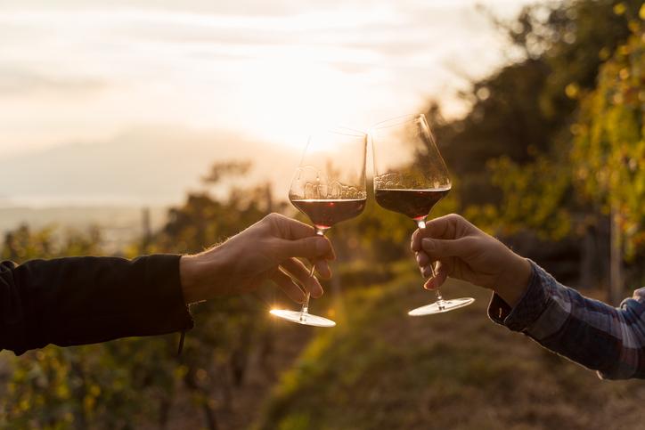 畑でワインを乾杯する様子