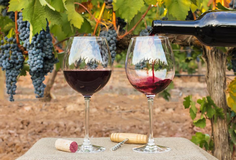 レストランで赤ワインのグラスで乾杯