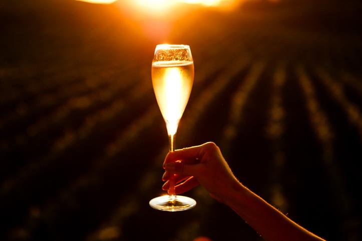 シャンパンの畑でシャンパングラスを持つ