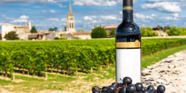 ボルドーの風景を背景に、ワインボトルとブドウが置かれている