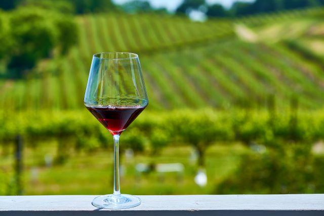 ブドウ畑を背景に置かれた赤ワインのグラス