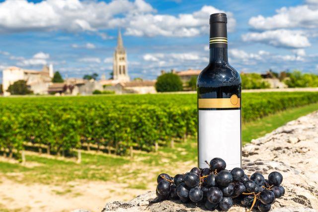 ブドウ畑を背景にし、ワインボトルとブドウが置かれている様子