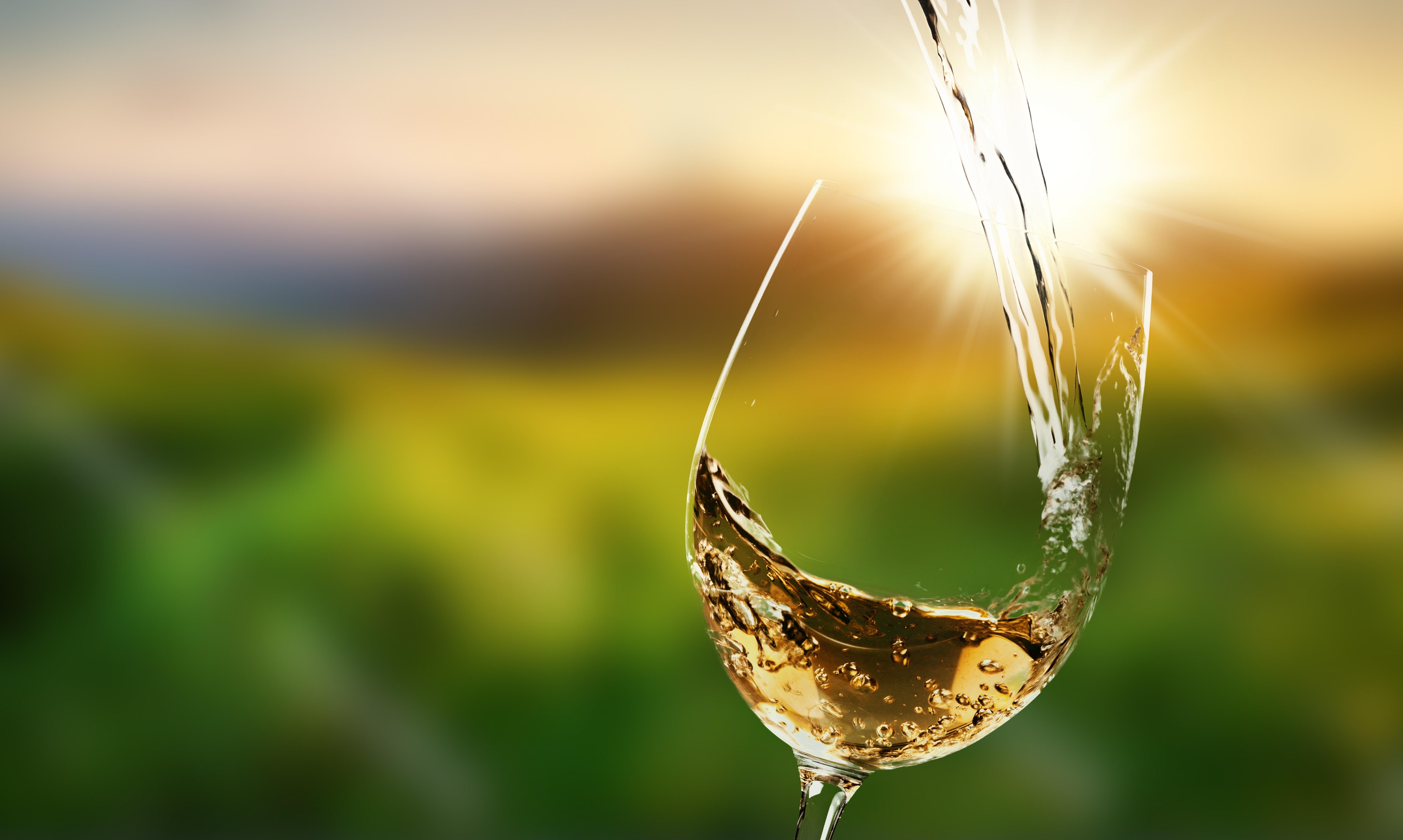グラスに白ワインが注がれている様子