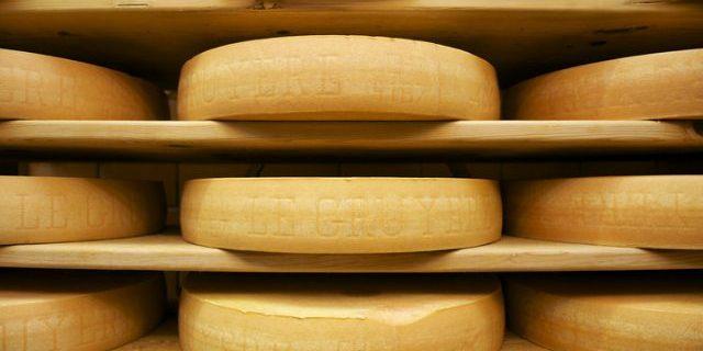 グリュイエールチーズが熟成庫に並ぶ
